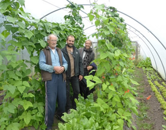 Aidan Gillan and staff in polytunnel at Tattie Hoaker