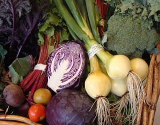 Spring onions, red cabbage, beetroot, tomatoes, brocolli from Tattie Hoaker farm